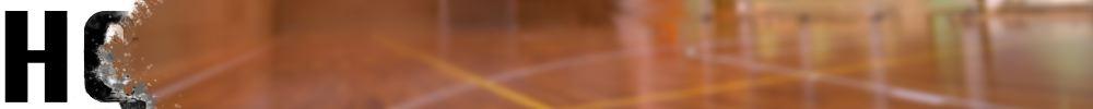 Ultimate Frisbee gym floor